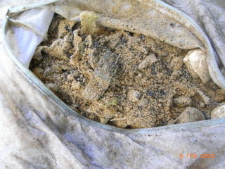 生ごみ堆肥3