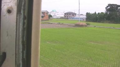 紀州鉄道キハ603 最終列車.avi_00008 林
