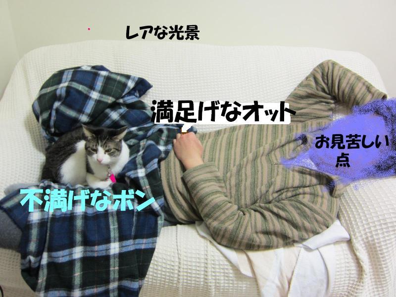 IMG_1031繝ャ繧「_convert_20110428224614レアな光景