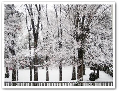 IMG_3922雪