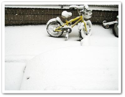 IMG_3925雪