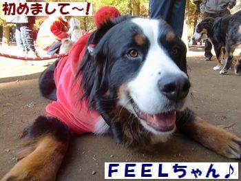 FEELちゃん♪