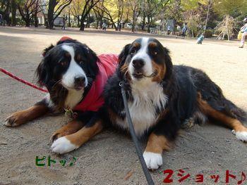 FELLちゃんと2ショット!!