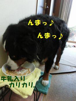 牛乳んま~!!
