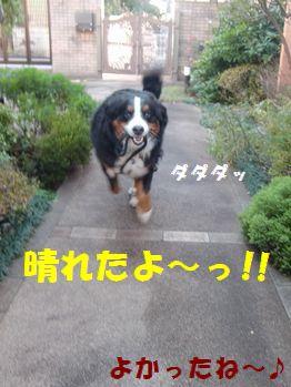 晴れたよ晴れたよ~!!