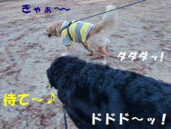 かけっこ~!!