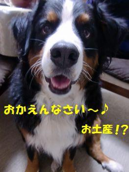 おみやげ~♪