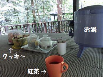 紅茶かコーヒーをどうぞ~!