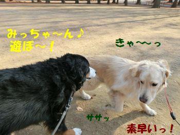 みっちゃんと遊ぶ~!!