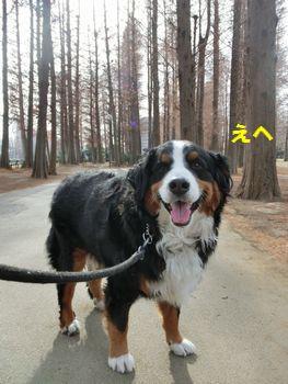 公園散歩~!