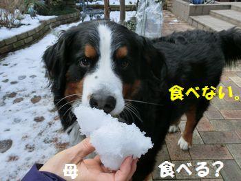 雪って食べるもんなの??