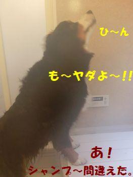 はやく終われ~!!