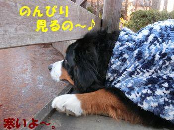 寒くないからのんびり~!!