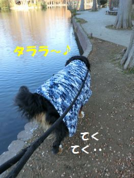 たららお散歩~!
