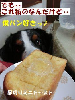 わわわ~!い~匂いっ!