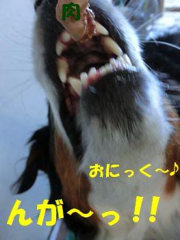 にっく~!!