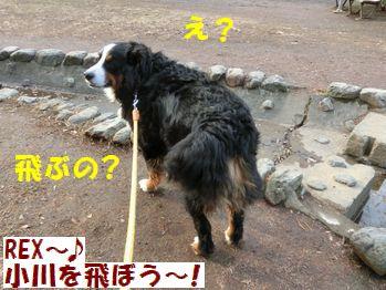 え・・飛ぶの?