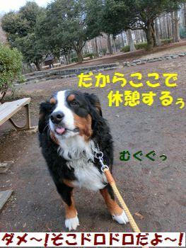 休憩すんの~!!