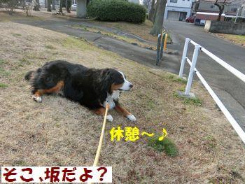 きゅうけい~!!