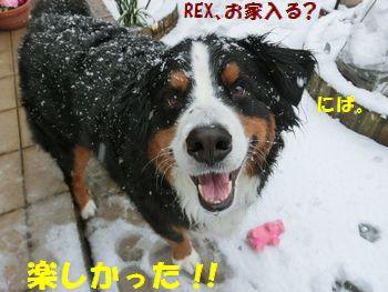 カバさんとの雪遊びは楽しいね~!!