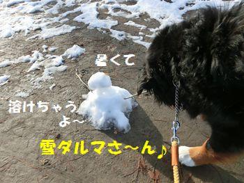 雪だるまさん、おはよ~!