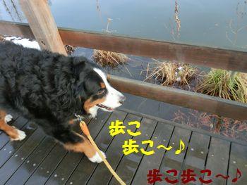 んじゃ、歩こ~!!