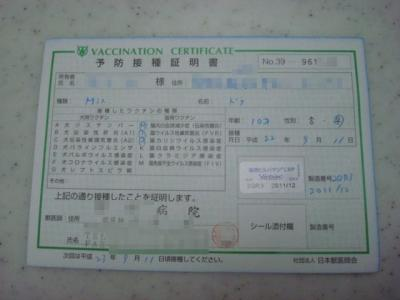 DSC09207.jpg