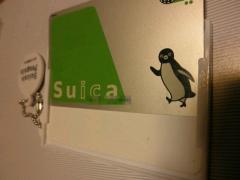 2010年5月2日Suicaペンギン2
