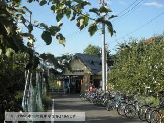 230413_Fuzokuchugakumae