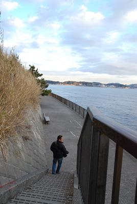 海沿いの道を