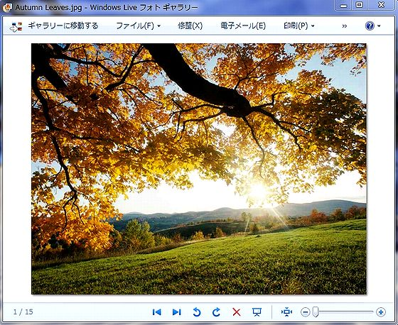 Live_PhotoG.jpg