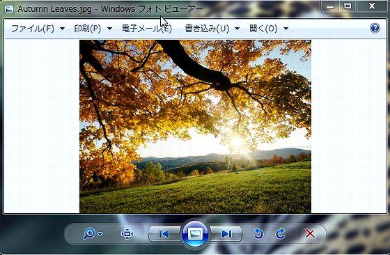PhotoVie.jpg