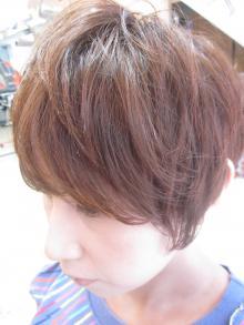 matsu+style+003.jpg
