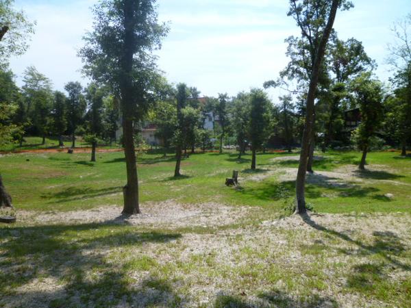 Sondy's Garden1