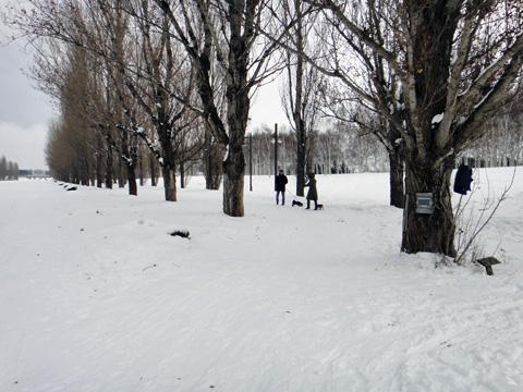 20120122-4.jpg