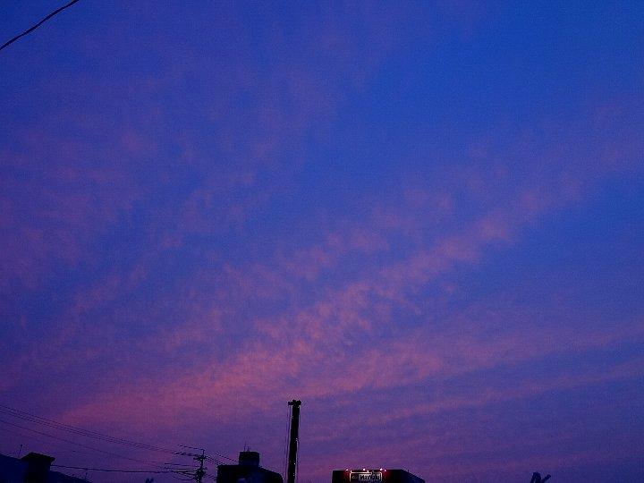 20110614-1.jpg