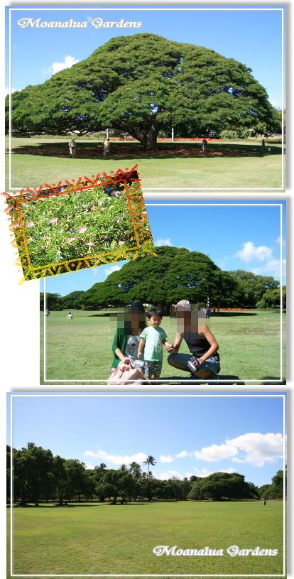 20100906-02.jpg