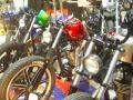 IMGP5551.jpg