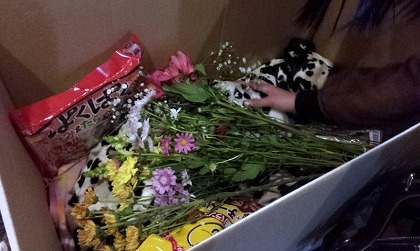 2011-12-122013_12_20.jpg