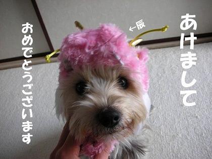2012010112173842c.jpg