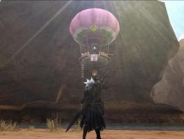 開拓ネコ気球