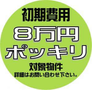 8万円ぽっきり