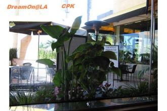 CPK1311w