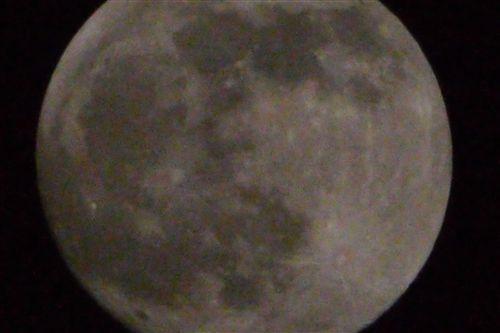 20101220_P1000895_R.jpg