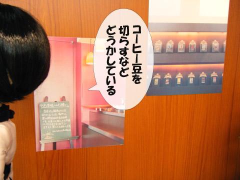 2010101810.jpg