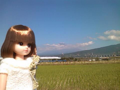 20101151.jpg