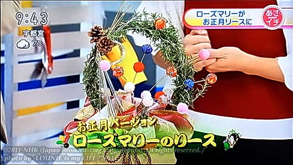 LOUNIE(ルーニィ)通販:LOUNIE(ルーニィ)2011冬物:2011/12/2(金)放送のNHKあさイチ「あさイチガーデン」「ハーブの香るクリスマス」で、LOUNIE(ルーニィ)2011冬物着用!テレビCMで菊地凛子さん着用、GINGER(ジンジャー)創刊2周年記念ファッションショー『ヴィーナス誕生祭2011』で香里奈さん着用の、切替がレトロクラシックで今季の旬顔ワンピース「ウールストレッチサキソニーワンピース」