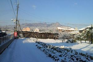雪がっ!!