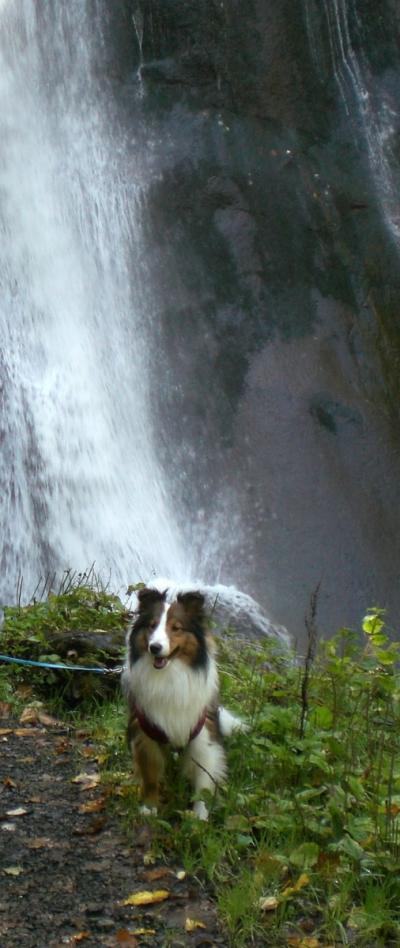 滝2貊・009_0920berry0007_convert_20091014092150