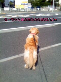 Image023~00~00